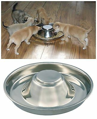 1 Puppy Litter Food Feeding Weaning Silver Stainless Dog Bowl Dish TX 25281