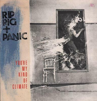 "Rip Rig & Panic(12"" Vinyl P/S)You're My Kind Of Climate-Virgin-VS507 12-Ex/Ex"
