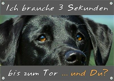 Hundewarnschild Labrador Retriever - Metallschild - stabil - TOP TIPP
