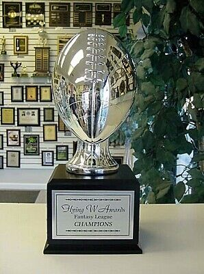 Fantasy Football Perpetual Trophy 16 Years Silver On Black Cube  Sleek!
