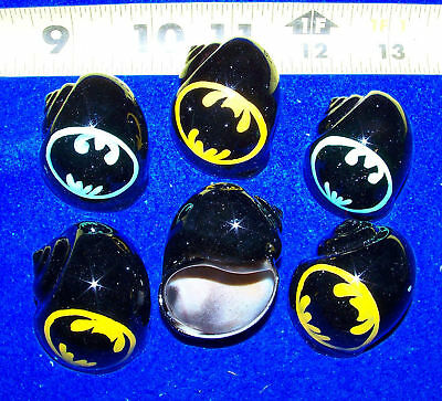 6 HERMIT CRAB SHELLS PAINTED SPECIAL  BATS growth  SHELLS Item # phc13-6