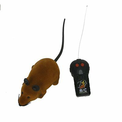 Mini Remote Control RC Mouse Mice With Wireless Remote Controller Cat Kids Toy