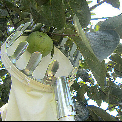 Hot Convenient Horticultural Fruit Picker Gardening Apple Peach Picking Tools