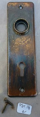 """Door Knob Back Plate flashed copper plated over brassl  5 1/2""""h x 1 5/8""""w"""