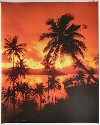 (LAMINATED) Tropical Beach POSTER (40x50cm) Sunset New Licensed Art