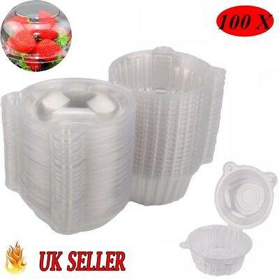100 Large Cupcake Holder Clear Plastic Muffin Case Boxes Pods Domes Home Kitchen