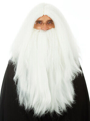 Long White Merlin Wizard Costume Wig & Beard Mens Fancy Dress Halloween