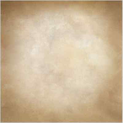 10x10FT Light Tan Bisque Color Wall Custom Photo Studio Background Backdrop