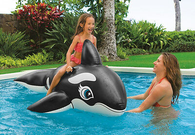 New INTEX Giant Inflatable Whale POOL TOY INFLATABLE RIDE ON 2 Handles 193cm