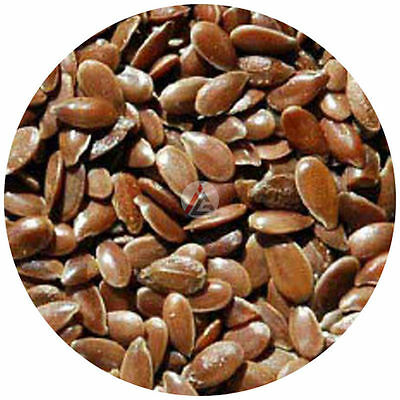 Linseed - 450 gm