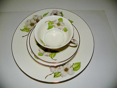 Pope Gosser 4 Piece Place Setting Dogwood Discontinued