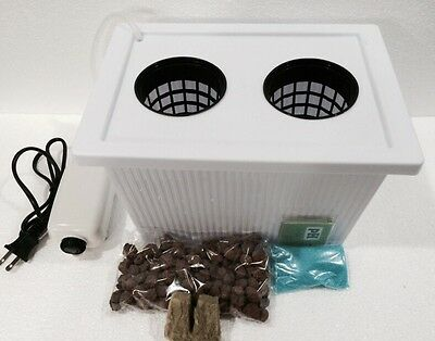 Medium 3' Two Plant Hydroponic Grow System Everything You Need