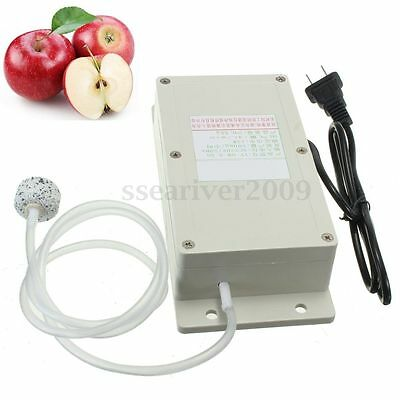 Professional AC 220V 50Hz Ozone Generator + Pipe For Air Foods Water Purifier