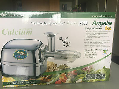 Sunbeam Je9000 Slow Juicer Stainless Steel : Juicers, Small Kitchen Appliances, Home Appliances