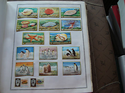 UMM AL QIWAIN - 16 timbres obliteres (animaux) stamp