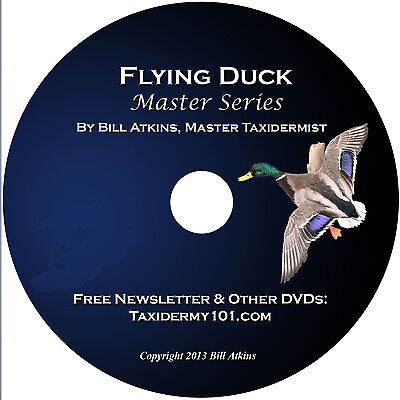 Learn Duck Taxidermy Training on DVD for Beginners - NEW!