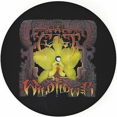 """7"""" The Cult - Wild Flower (1987) Rare Picture Disc - Unplayed Ex Shop Stock"""