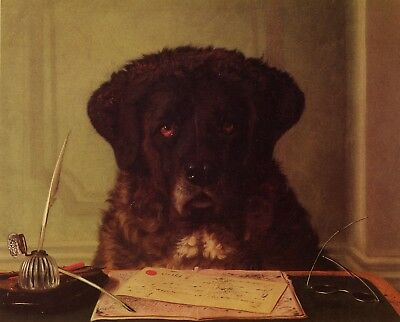 "NEWFOUNDLAND DOG FINE ART PRINT - ""The President"" by Horatio Henry Couldrey"