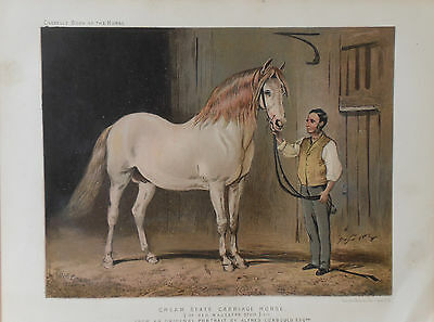 1876 Antique Print CREAM STATE CARRIAGE HORSE - Alfred Corbould Chromolithograph