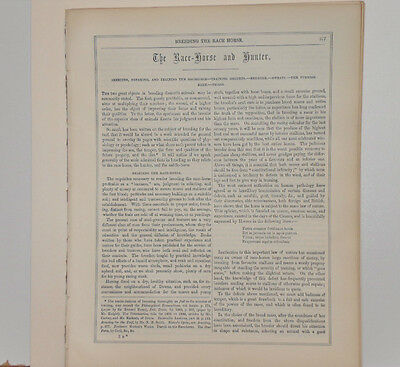 1899 Antique Ephemera BREEDING the RACE HORSE and HUNTER Racing Information