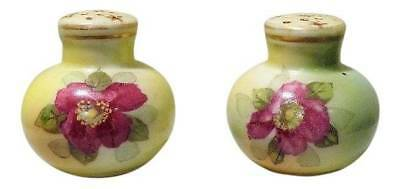 Vintage Handpainted Porcelain Salt & Pepper Shakers * Green w Pink Floral