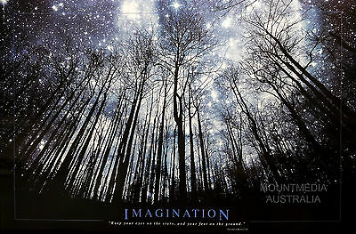 (LAMINATED) IMAGINATION - STARS & TREES MOTIVATIONAL QUOTE POSTER (61x91cm)  NEW