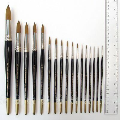 Pro Arte Prolene Round Brushes Series 101. Artists Watercolour Single Brush.