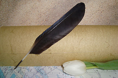 """""""Raven"""" Crow Feather Quill Pen for Calligraphy, handmade craft by Federkram"""