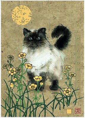 Puzzle Heye 1000 Teile - Jane Crowther: Meadow Cat (51834)