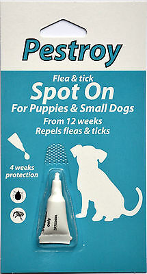 2 Pack Of Pestroy Flea & Tick Spot On For Puppies And Small Dogs