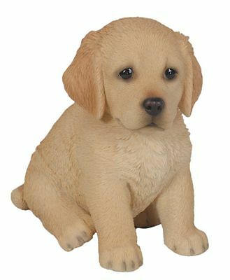 Vivid Arts Pet Pals - Golden Retriever Puppy