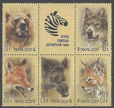 Timbres Animaux URSS 5558/62 ** lot 12080