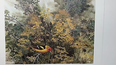 TOUCH OF BLUSH, Goldfinch, Print of Watercolor, Signed and Numbered, Jean Vietor