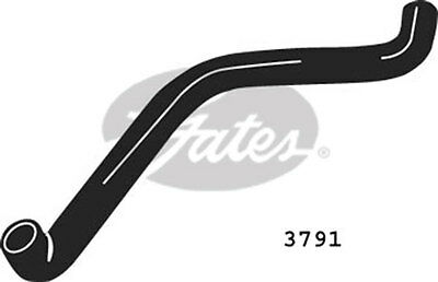 Gates Radiator Hose 3791 Fit with Fiat Tipo