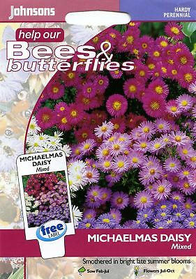 Johnsons Seeds - Pictorial Pack - Flower - Michaelmas Daisy Mixed - 200 Seeds