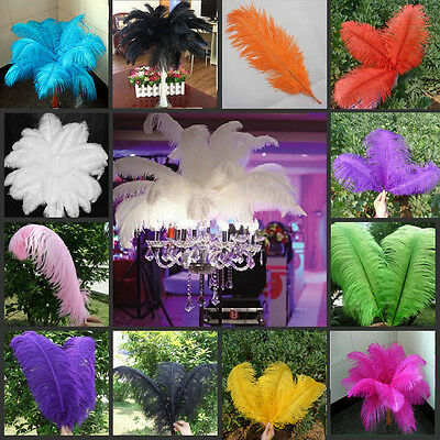 50Pcs Natural Ostrich Feathers Bridal Party Supplies 6(15cm)-8inch(20cm) New