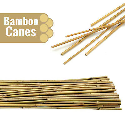 7ft Bamboo Garden Canes(10-14mm)Thick Strong Professional fencing Plant Support