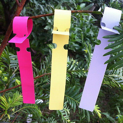 100X Garden Plant Pot Markers Plastic Stake Tied Tags Court Nursery Seed Labels