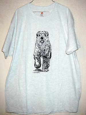 BOUVIER Des FLANDRES w/Natural Ears - Coming&Going Hanes T-shirt / Unisex Sizes