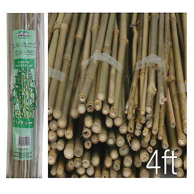 Pack of 40 Wooden Natural Bamboo Garden Canes Plant Canes Strong Support - 4ft