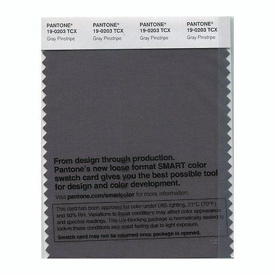 Pantone Smart Swatch 19-0203 Gray Pinstripe