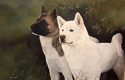 "JAPANESE AKITA DOG FINE ART LIMITED EDITION PRINT - ""Two of a Kind"""