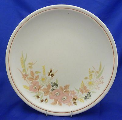 """A Boots 'hedge Rose' 10¼"""" Dinner Plate"""