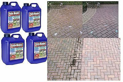 10Liter, Patio Magic Decking Fencing Green Mould Algae Driveway Path Cleaner New