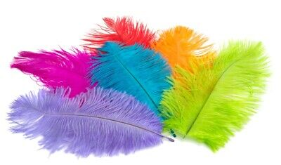 """5 OSTRICH Feather PLUMES 18-23"""" Full Wing MANY COLORS Feathers; Bridal/Halloween"""