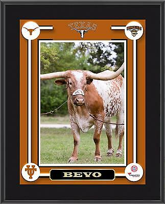 "Texas Longhorns Bevo Mascot Sublimated 10.5"" x 13"" Plaque"