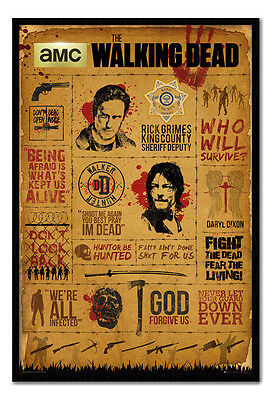 Framed The Walking Dead Infographic TV Series Poster New