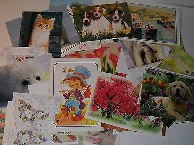 Card Fronts 50 Assorted Flowers Animals for Scrapbooking