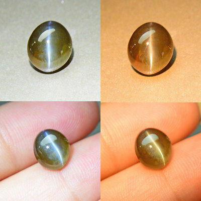 Unheated / Untreated Alexandrite Silver Ray Cat's Eye 3.76 ct. Certified (00353)
