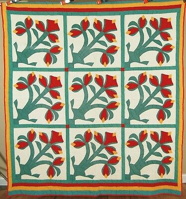 RARE Vintage Amaryllis Red, Green & Cheddar Applique Antique Quilt ~VIBRANT!